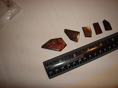 gemstones 021 (DVoosen) Tags: ammolite