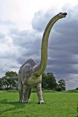 what a neck! ;) (green_lover) Tags: poland dinosaurs brontosaurus apatosaurus herowinner wrzosowo