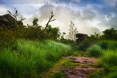 Magic Land ............ (Johny George) Tags: india green love nature beautiful forest flickr alone kerala nostalgia lonely lovely today hdr villege idukki me2youphotographylevel1