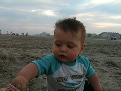Leo on the Beach