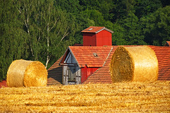 The old barn (RainerSchuetz) Tags: barn harvest stubblefield baleofstraw bestofblinkwinners