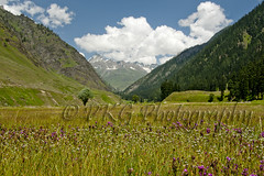 Warwan Paradise on Earth (PKG Photography) Tags: road travel moon tourism trekking trek togetherness landscapes honeymoon altitude traditional plan attitude honey transportation kashmir wilderness gettyimages aspirations traditonal gujjar kashmirindia gurjar traveltokashmir kashmirtourism warwan kashmirwallpapers pkgphotography gettyimagesindiaq4 kashmirplace wallpaperskashmir