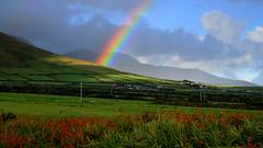 Rainbow in Kerry (Barbara Walsh Photography) Tags: trip ireland mountains colour weather rainbow view visit kerry irishphotographer lispole
