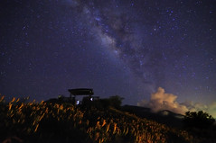 The Milky Way at Mt. Sixty Ton (Vincent_Ting) Tags: sky star taiwan daylily  formosa  sunrays  milkyway hualian    hemerocallisfulva       clousd   starstrails