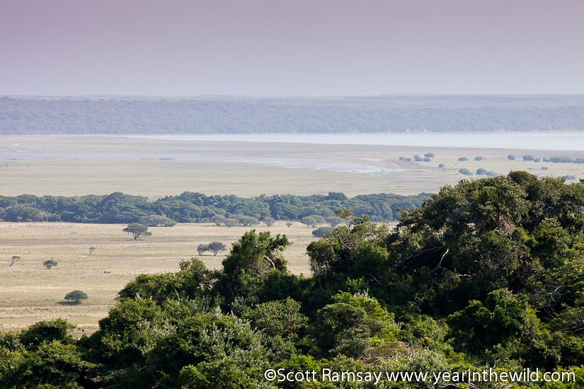 Isimangaliso Wetland Park - South Africa