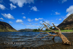 Crummock Water (Nigel Dell) Tags: summer landscape cumbria crummockwater ngdphotos