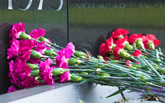 Flowers At The Wall (BSJ Photo) Tags: america august2016 bsjphoto brittanystjordan commemorate flowers inmemoryof purple red usa vietnamwall washingtondc stone