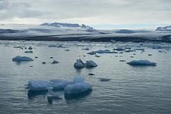 Jkulsrln Glacier Lagoon (paolo-p) Tags: acqua water ghiaccio ice nuvole clouds riflessi reflections jkulsrlnglacierlagoon islanda iceland