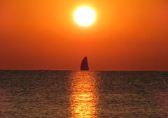 IMG_0055x (gzammarchi) Tags: italia paesaggio natura mare ravenna lidoadriano alba sole barca vela riflesso monocrome