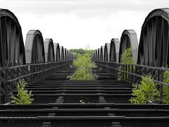 (StrongGrace Photography) Tags: dmitzereisenbahnbrcke selectivecoloring railwaybridge denkmal historic kaltenhof elbtalaue