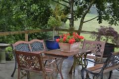rainy days... (lesya2014) Tags: patio backyard pots tableandchairs rainydays