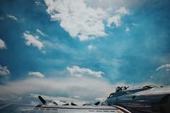 (7thound) Tags: airplane b17 yankeelady yankeeairforce puremichigan airshow bomber ww2