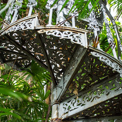 Botanic gardens (kamillel) Tags: glasgow scotland uk botanicgardens staircase
