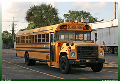 "Blue Bird / International S-Series ""Jefferson Parish Schools"" (uslovig) Tags: blue bird bus coach buses busse school schul schulbus usa jefferson parish schools international s series serie new orleans louisiana la"