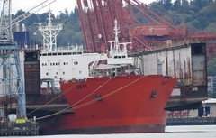 Dockwise Swift (zargoman) Tags: seattle elliottbay pugetsound harborisland heavy lift ship dockwise swift drydock