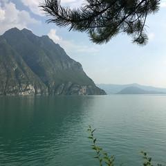 (Paolo Cozzarizza) Tags: italia lombardia bergamo soltocollina acqua lago lungolago alberi riflesso cielo