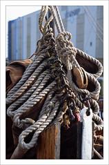 Sailing vessel - detail (macfred64) Tags: film analog 35mm 135 transparency diapositive slidefilm fujiprovia100f nikonf4 nikkoraf3570mmf28 rope sail vintagesailingvessel sailboat
