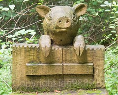 Schwein am Gatter Wood Sculpture, Emmen, Lucerne, Switzerland (jag9889) Tags: sculpture jag9889 pig fence reuss 20160727 wood publicart centralswitzerland switzerland emmen outdoor 2016 europe igemmenimwald cantonlucerne alpine art artist ch carver figurenweg forest foresttrail helvetia holz holzskulpturenweg innerschweiz interessengemeinschaft kantonluzern lu landscape lucerne luzern reussuferweg riverbank schnitzer schweiz skulptur skulpturenweg streetart suisse suiza suizra svizzera swiss woodcarver zentralschweiz