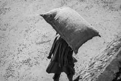 Woman-Carrying-35-Kilos-of-Coffee,-Tanzania-2015