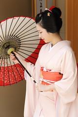 Maiko (Teruhide Tomori) Tags: portrait japan lady kyoto traditional maiko parasol 京都 日本 kimono obi 着物 舞妓 日傘 花街 hassaku kagai 日本髪 八朔 earthasia olétusfotos
