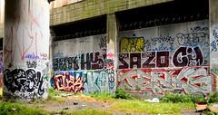 rodi / flesh / hezht / hype / sazo / cajun / quas / ? / jenks (thesaltr) Tags: sf sanfrancisco art flesh train graffiti hype rails bayarea cajun rodi lords jenks urbex tfl quas btm sazo hezht y013 thesaltr