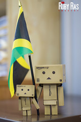 Day 236 (Ruby Ras) Tags: canon day days jamaica 236 danbo 366 60d danboard 3662012