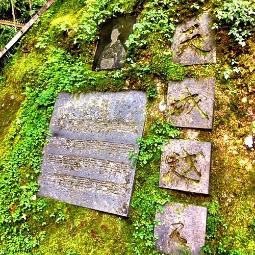 浄蓮の滝 (2)