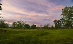 Vestavia Golf Course (T. Scott Carlisle) Tags: tsc tscottcarlisle tscottcarlislecom