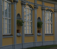 Orangery (:Linda:) Tags: germany thuringia town gera orangery window flowerpot rocaille pillar sule column