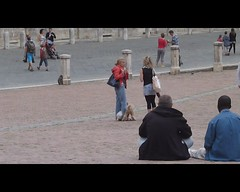 You've got a friend (Darling Starlings Flying the Nest) Tags: friends italy holiday video tony penny siena 2012 piazzadelcampo dogsplaying wholetthedogsout youvegotafriend musicmonday