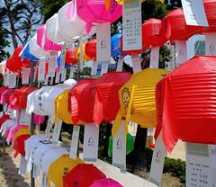 Colours (Ahsan Riaz Chaudhary) Tags: tourism sightseeing monks seoul southkorea touristattraction gangnamgu bongeunsa riaz ahsan chaudhary koreanbudhism templestayprogram