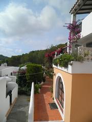 416 (Mig_R) Tags: holiday sanantonio island spain holidays september espana spanish ibiza eivissa 2012 balearicislands balearics calallonga casalily