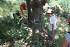 Taller: In Situ II - Fundación Cerezales