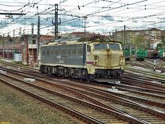251 (firedmanager) Tags: renfe railtransport renfemercancías 251 mitsubishi tren train trena locomotora locomotive