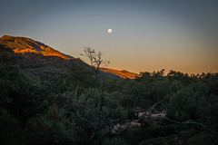 MacDonnell Ranges Redbank Gorge sunset Northern Territory