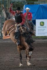 Tak_CPRA_2016-5096 (takahashi.blair) Tags: coachtak rodeo blairtakahashitakahashiblaircoachtakblairtakahashi pincher creek barrel racing bronc rope bareback steer bullriding