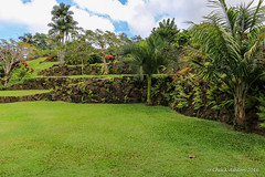 Princeville_Botanical_Gardens (Chuck 55) Tags: princeville botanical gardens kauaihawaii kauai