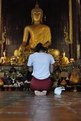 PriereàBudha (renoleon) Tags: budha bouda thailande thailand d90 chi chiang mai chiangmai temple or golden prayer priere 35mm flickr