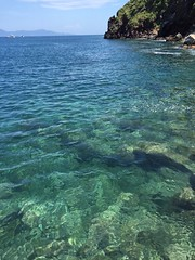 Clear sea (Wizxing) Tags:     clearsea clear yilan taiwan turtleisland island sky bluesea sea