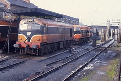 Limerick shed 038 24oct92 s255 (Ernies Railway Archive) Tags: ir ie irishrail limerickcity limerick