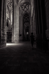 Galeria catedral de Astorga (kanzer16) Tags: sony voigtlander ilce7r voigtlandersuperwideheliar15mmf45iii blackandwhite blancoynegro architecture arquitectura catedral astorga galera naturallight light