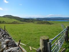 Fields above the WLT, 2016 Aug 04 -- photo 3 (Dunnock_D) Tags: uk unitedkingdom britain scotland argyll kintyre green grass field fence gate stone wall westlochtarbert loch sea sealoch hills
