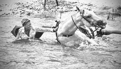 Cowgirl Down (Just Joe ( I'm back...sort of )) Tags: cowgirl horse hss slidersunday blackandwhite filmnoir action horses horseracing