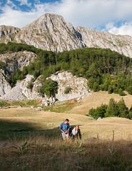 ZOKA Albanie 2015_27_DennisWansink (Dennis Wansink) Tags: zoogdiervereniging vzz zomerkamp veldwerkgroep albanië albania shebenikjabllanica park reservaat fushëstudë librazhd al