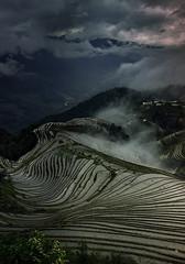 After sunset in Longsheng. (Massetti Fabrizio) Tags: fields fog terrace china cina nikond4s longsheng landscapes landscape sunset sun guilin yangshuo yangshou yellow rice