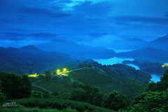 Tea Plantation (Singer ) Tags: sunset sky mist mountain lake reflection canon river tea taiwan plantation singer taipei         seaofclouds                      singer186