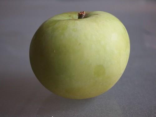 White apple, Quebec