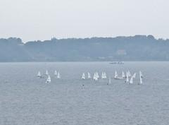 Competition (Ven in the background). (Ia Löfquist) Tags: sea sailboat island skåne hiking hike led ven hav vandring segelbåt öresund ö skåneleden vandringsled