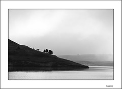 Mist on Elkwater. (local37) Tags: morning bw mist lake hills alberta cypress tranquil provincialpark elkwater
