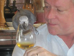 Negociant Jeffrey Davies and his favorite taster